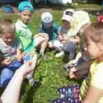 Формирование экологической культуры дошкольников