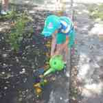 Нравственно-трудовое воспитание в детском саду