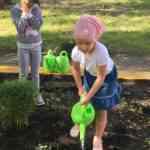 Нравственно-трудовое воспитание дошкольников в летний период